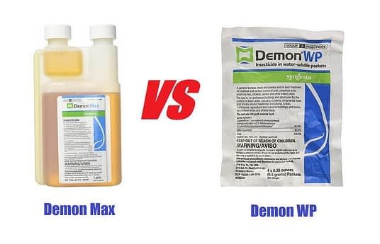 demon max vs demon wp